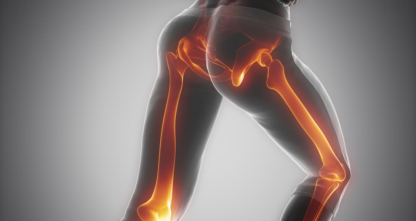 Anatomy in Motion | Perth Physiotherapist
